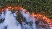 Vùng băng giá đông bắc Siberia, Nga bỗng biến thành chảo lửa