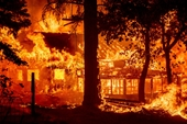 Cháy rừng khủng khiếp khắp 21 tỉnh của Thổ Nhĩ Kỳ, nhiều khu dân cư bị thiêu rụi