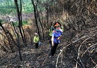 Ngược ngàn truy tìm thủ phạm gây ra các vụ cháy rừng