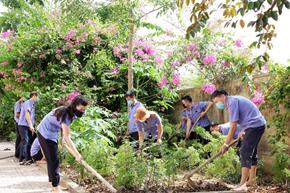 Xây dựng môi trường làm việc xanh - sạch - đẹp ở VKSND tỉnh Nghệ An