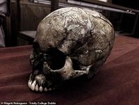 Hồi sinh lại người Nhật Bản cổ từ hài cốt 9 000 tuổi