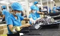 Người lao động ảnh hưởng bởi đại dịch được hỗ trợ từ quỹ bảo hiểm thất nghiệp