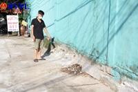 Công ty Dệt may 29 3 đã xử lí ô nhiễm sau phản ánh của Báo Bảo vệ pháp luật