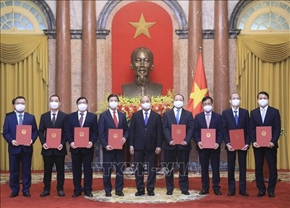 Chủ tịch nước trao quyết định bổ nhiệm 8 đại sứ, trưởng cơ quan đại diện Việt Nam ở nước ngoài