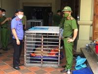 VKSND tỉnh Nghệ An kiến nghị Chủ tịch UBND tỉnh áp dụng biện pháp phòng ngừa tội phạm về bảo vệ động vật hoang dã