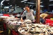 Thủy hải sản tăng giá