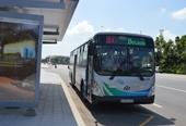 Quy hoạch giao thông công cộng cần phù hợp với đô thị văn minh, hiện đại