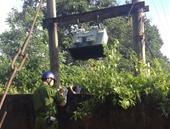 Tái diễn nạn trộm cắp thiết bị trên hệ thống điện