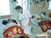 Ngộ độc nấm rừng, 19 người ở Lai Châu phải nhập viện cấp cứu