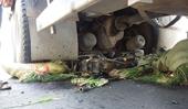 Xe tải cán nát mô tô, 1 người bị thương nặng