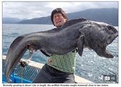 Bắt được cá to dị thường gần Fukushima