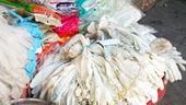 Ẩn họa găng tay y tế được tái chế bằng nước tẩy rửa Trung Quốc