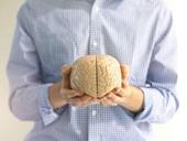 Cấy ghép não người để trường sinh bất lão