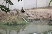 Suối Quan bị xả thải gây ô nhiễm nặng