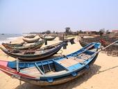 Quảng Bình thiệt hại 4 000 tỷ đồng sau sự cố môi trường biển