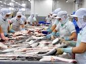 Cấp phép khống 800 sản phẩm thủy sản là sai phạm có tổ chức