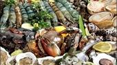 Loại thực phẩm nào chứa nhiều chất cấm nhất hiện nay